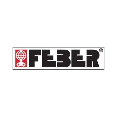 feber logo