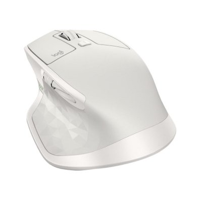 Mouse IMG 1