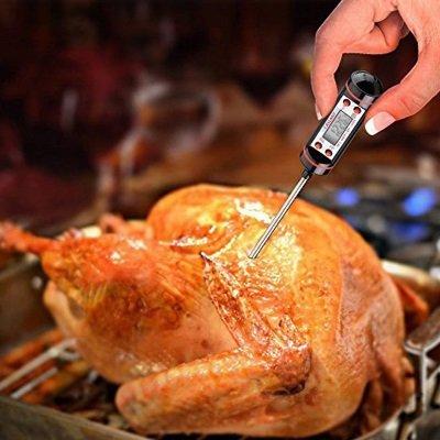 Termometro da cucina HUALANS Caslant DTC-1 pollo IMG 5