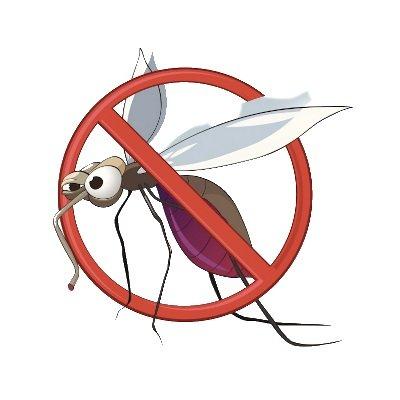 zanzariera melchioni olimpic no zanzare IMG 4