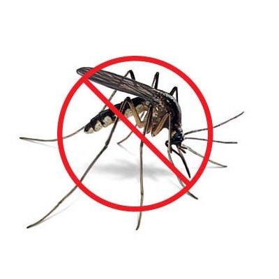 zanzariera mondo verde corrente no zanzare IMG 4