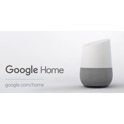 Google Home caratteristiche IMG 4