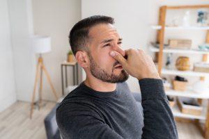 cattivi odori ozonizzatore